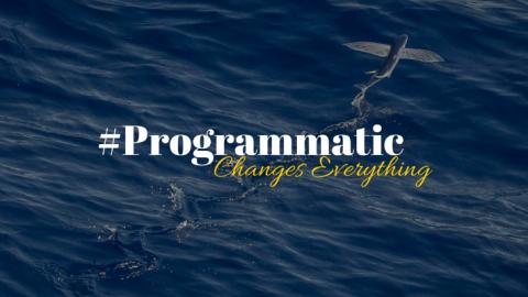 "Programmatic ""buzzword"""