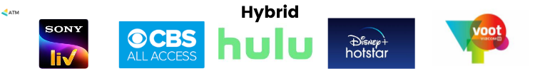 Hybrid: Video On Demand